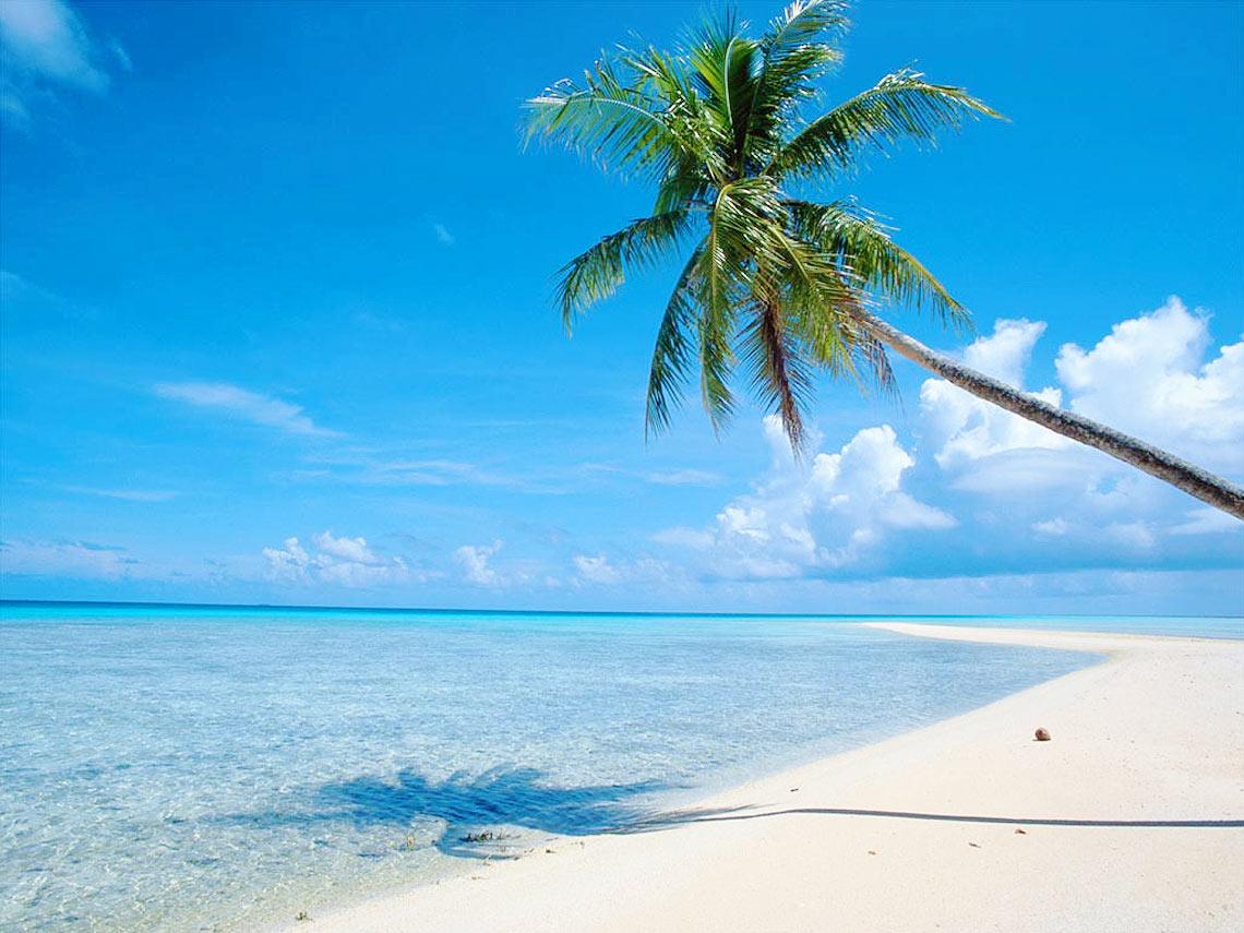 zieke werknemer en vakantie
